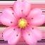 cherry blossom Emoji on Apple, iOS