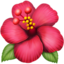 hibiscus Emoji on Apple, iOS