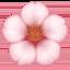 cherry blossom Emoji on Facebook