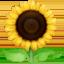 sunflower Emoji on Facebook
