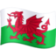 flag: Wales Emoji on Facebook