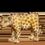 leopard Emoji on Facebook