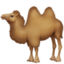 camel Emoji on Facebook