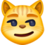 cat with wry smile Emoji on Facebook