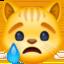 crying cat Emoji on Facebook
