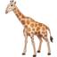 giraffe Emoji on Facebook